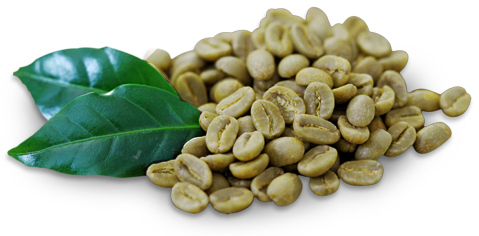 green-coffee-42